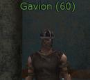 Gavion