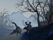 Frostswamp 4