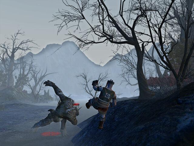 File:Frostswamp 4.jpg