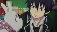 Dog with Rin