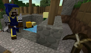 Minecraft Diaries Season 1 Episode 1 Screenshot6