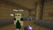 Minecraft Diaries Season1 Episode 15 Screenshot14