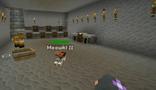 Minecraft Diaries Season 1 Episode 13 Screenshot13