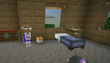 Minecraft Diaries Season 1 Episode 9 Screenshot6