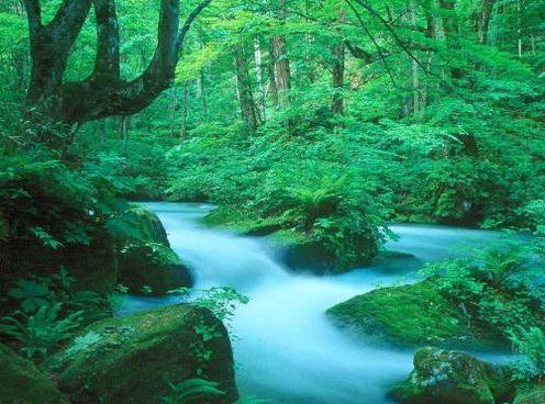 File:Fresh-water-stream-manama-bahrain 1152 12962125289-tpfil02aw-15203.jpg