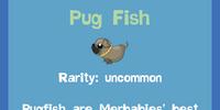 Pug Fish
