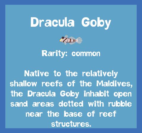 File:Fish2 Dracula Goby.png