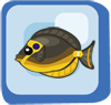 File:Fish Naso Tang.png