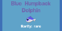 Blue Humpback Dolphin