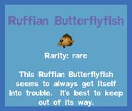 Fish2 Ruffian Butterflyfish