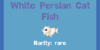 White Persian Cat Fish