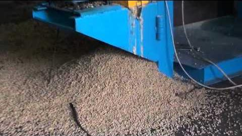 Wet type fish feed extruder working,fish feed pellet making-0