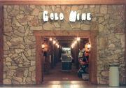 GoldMine 9 front