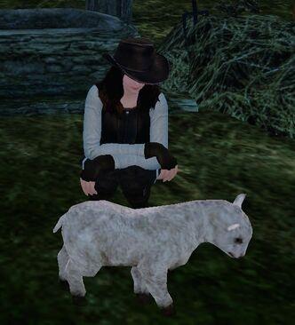 Livestock vend