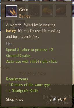 File:Barley Grain.jpg