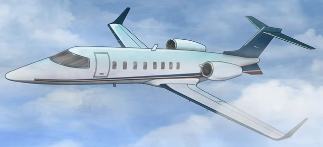 File:PrivatePlane.png