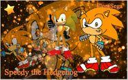 Speedy the Hedgehog Wallpaper
