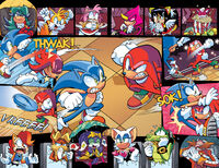 Sonic and Knuckles in Championship