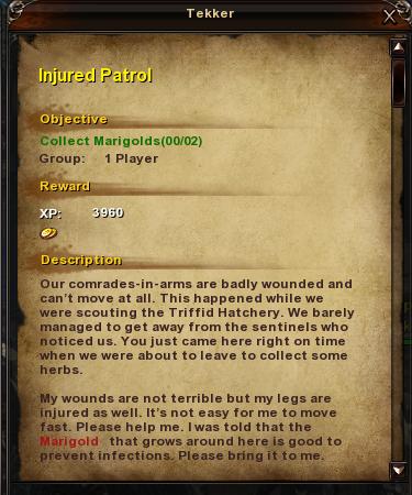 10 Injured Patrol