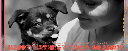 File:Happybdaycoco.png