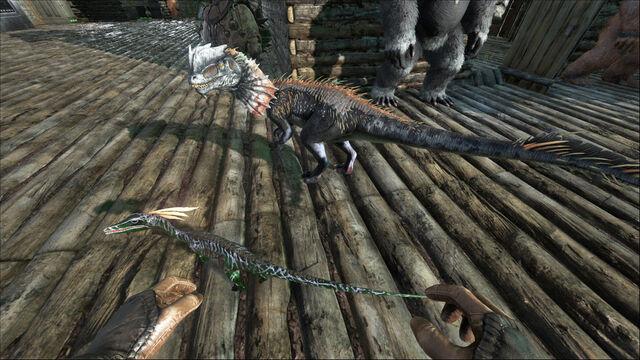 File:ARK-Dilophosaurus and Compsognathus Screenshot 001.jpg
