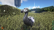 ARK-Dodo Screenshot 007
