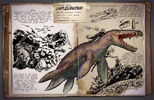45 - Liopleurodon