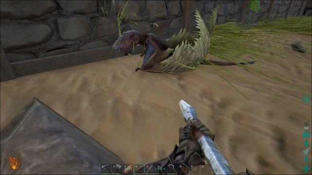 File:ARK-Dimorphodon Screenshot 010.jpg