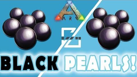 black pearls ark