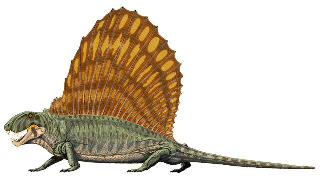File:Dimetrodon grandis.jpg