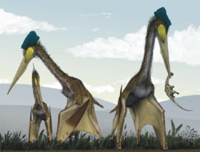 Life restoration of a group of giant azhdarchids, Quetzalcoatlus northropi, foraging on a Cretaceous fern prairie