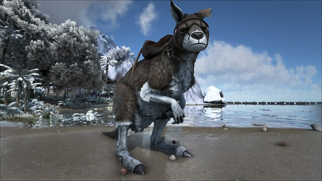File:ARK-Procoptodon Screenshot 004.jpg