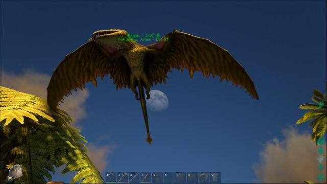 File:ARK-Dimorphodon Screenshot 001.jpg