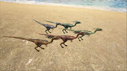 ARK-Compsognathus Screenshot 005
