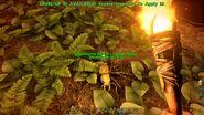 ARK-Titanomyrma Screenshot 003