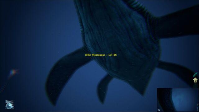 File:ARK-Plesiosaur Screenshot 003.jpg