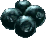 File:Narco Berries.png