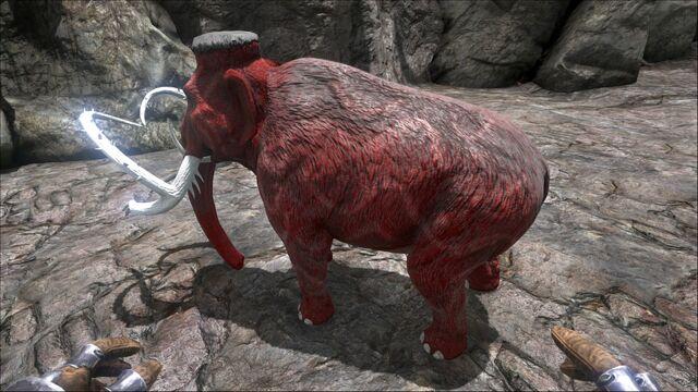 File:Mammoth PaintRegion0.jpg