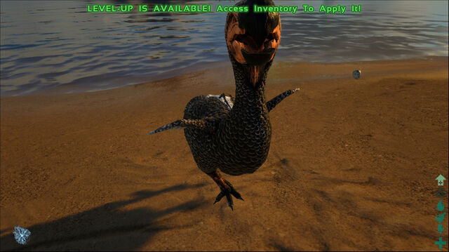 File:ARK-Dodo Screenshot 006.jpg