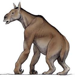 Rarezas-extintas 4 1277597