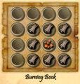 Burning-book.jpg