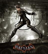 Catwoman's Revenge poster