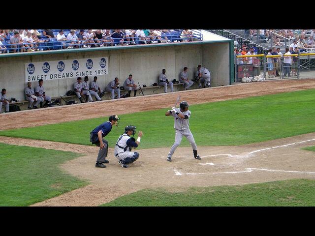 File:Minor League Baseball-1201028880-42.jpg