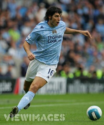 File:Player profile Vedran Corluka.jpg