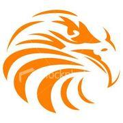 Zz falcon logo