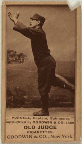 File:Player profile Blondie Purcell.jpg