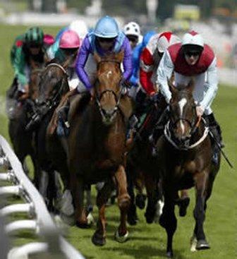 File:Bet Horseracing.jpg