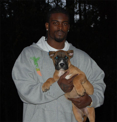 File:Michael vick dog1.jpeg