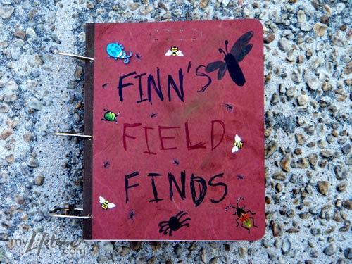 File:Finn-Field-FindsGallery1.jpg