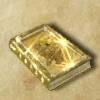Buch Goldrausch